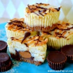 Reeses-Peanut-Butter-Cup-Mini-Cheesecakes-Recipe