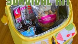Road Trip Survival Kit – Gift Idea