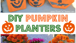 Gardening in the Fall with Pumpkin Planters
