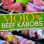 mojo beef kabobs Diagonal Pin Pinterest text overlay