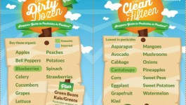 Guide to Buying Organic – Dirty Dozen and Clean 15