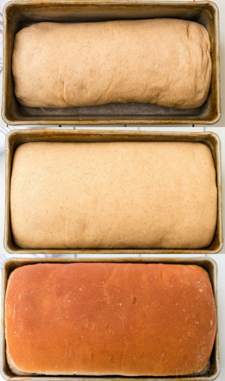 cinnamon bread collage with bread raising and baked in pan