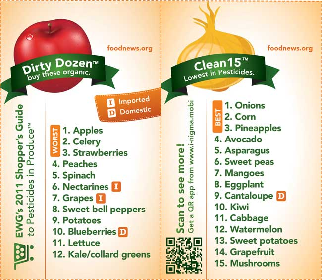 Dirty Dozen and Clean 15 Guide
