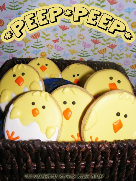 chicks01
