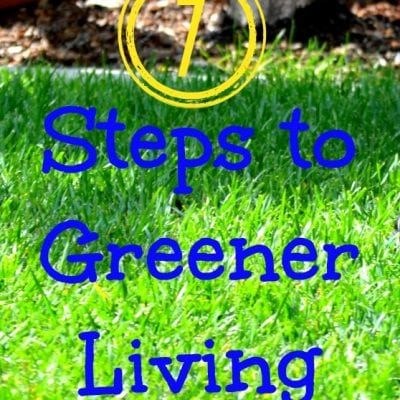 7 Easy Steps to Greener Living