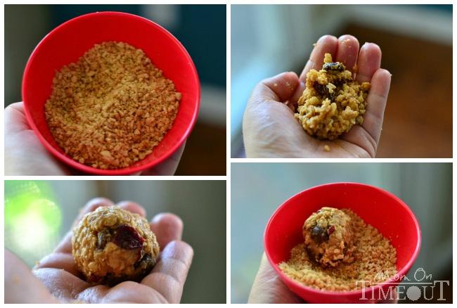 oat-bites-collage