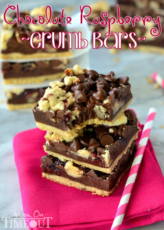 dark-chocolate-raspberry-crumb-bar-recipe