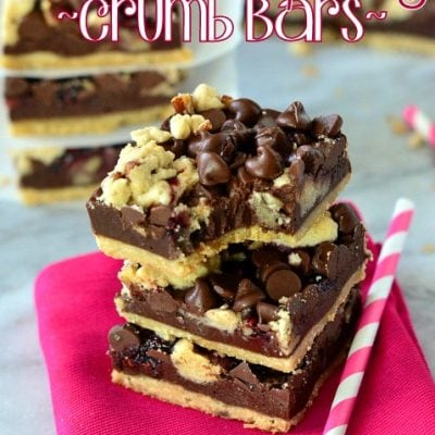 Chocolate Raspberry Crumb Bars