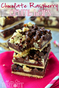 dark-chocolate-raspberry-crumb-bars