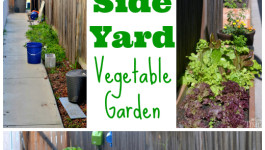 side-yard-vegetable-garden-collage