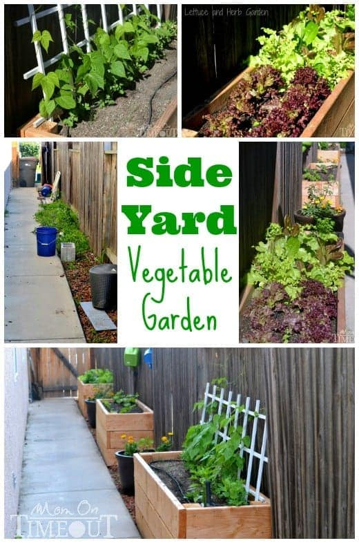 Backyard Vegetable Garden Design Side Yard Vegetable Garden and DIY Planter Boxes at MomOnTimeout.com #ad