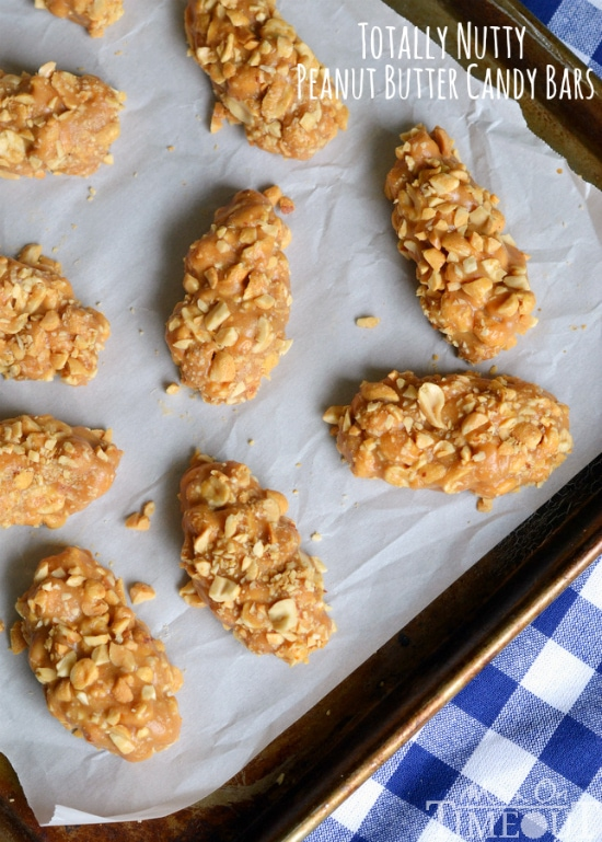 No-Bake, Easy, 4 Ingredient Totally Nutty Peanut Butter Candy Bars   MomOnTimeout.com