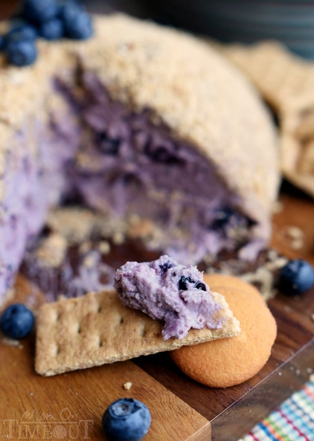 This Blueberry Pie Cheese Ball tastes just like a blueberry cheesecake and is the perfect appetizer or dessert for your next get together! Easy and delicious! | MomOnTimeout.com