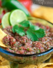 easy-garden-blender-salsa-recipe-2