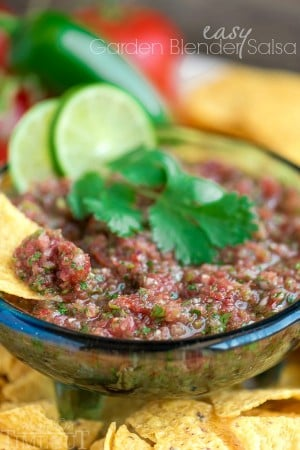 easy-garden-blender-salsa-recipe-2