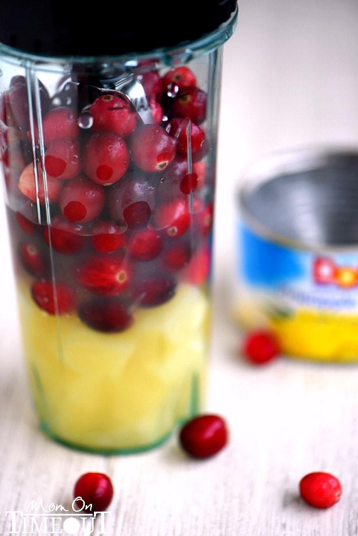 cranberry-fluff-blender
