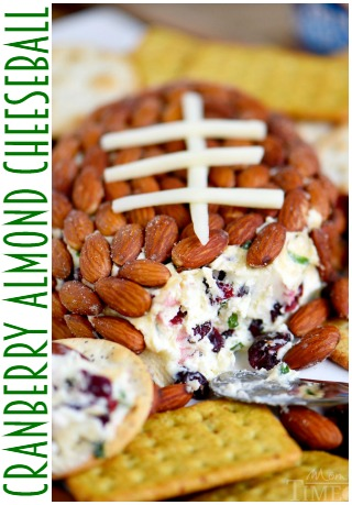 cranberry-almond-cheese-ball-SIDEBAR