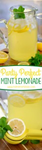 party-perfect-mint-lemonade-collage