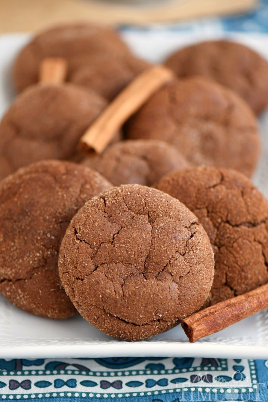 These Mexican Chocolate Snickerdoodles pack a powerful flavor punch that keeps you wanting more! Cinnamon and cayenne combine for an explosion of flavor that's hard to resist. This easy cookie recipe is the perfect dessert for your chocolate loving friends!