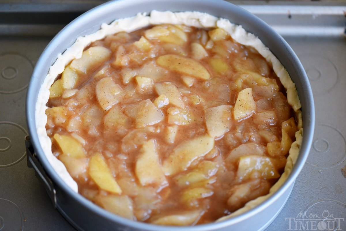 Deep Dish Dutch Apple Pie - Mom On Timeout