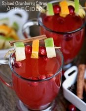 Slow Cooker Spiced Cranberry Citrus Apple Cider