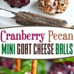 cranberry-pecan-mini-goat-cheese-balls-collage