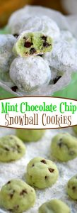 mint-chocolate-chip-snowball-cookies-collage
