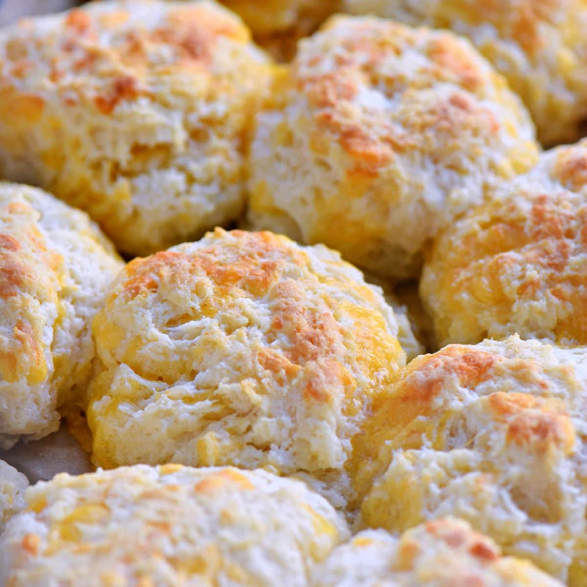 baked cheddar bay biscuits ready for butter topping to be brushed on.
