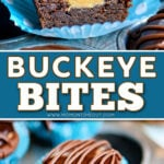 two image collage showing a peanut butter filled chocolate cookie cut in half sitting on a blue and white muffin liner and the bottom image is a whole buckeye bite. center color block with text overlay.