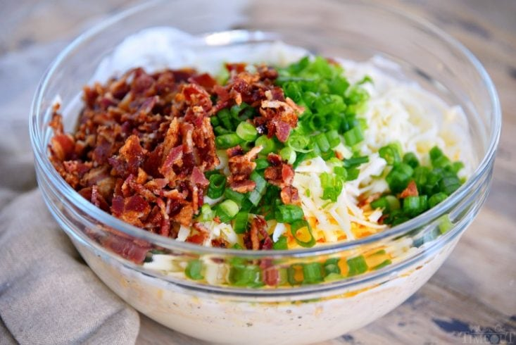 baked-bacon-cheese-dip-recipe-ingredients