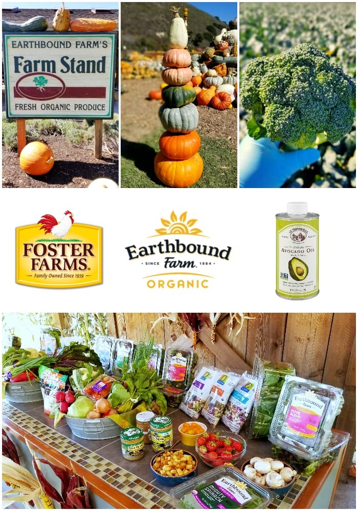 earthbound-farm-organic-collage