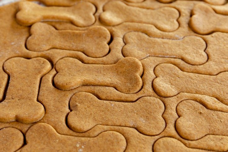 homemade dog treats dough cut out