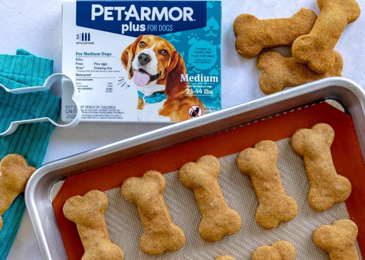 peanut butter dog treat recipe baked on baking sheet