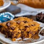 chocolate chip pumpkin cake with title