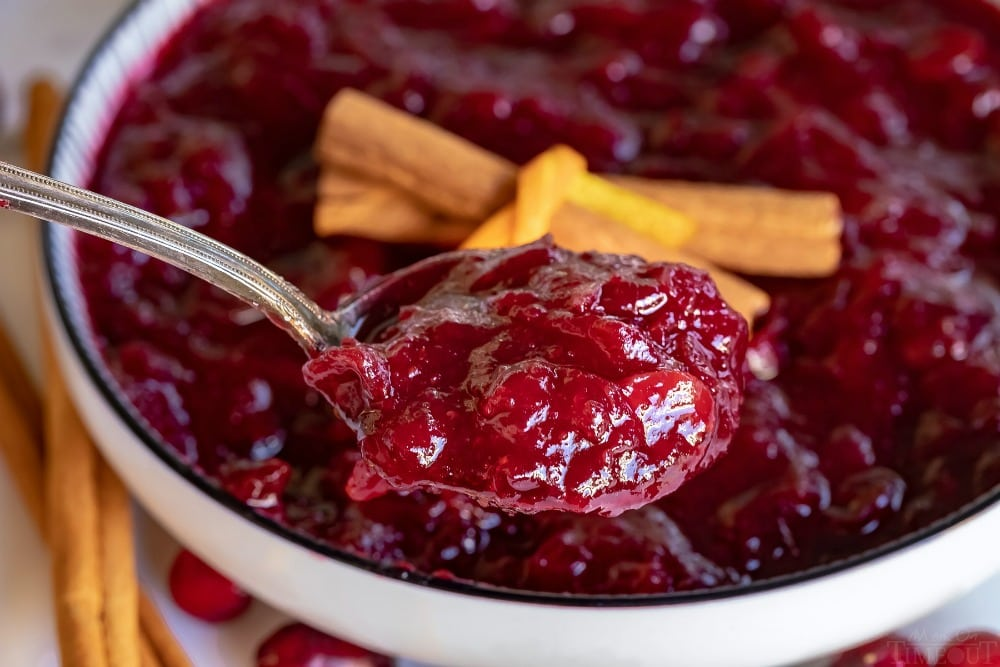 cranberry sauce spoonful in white bowl
