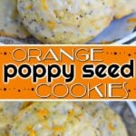 orange poppy seed cookies collage