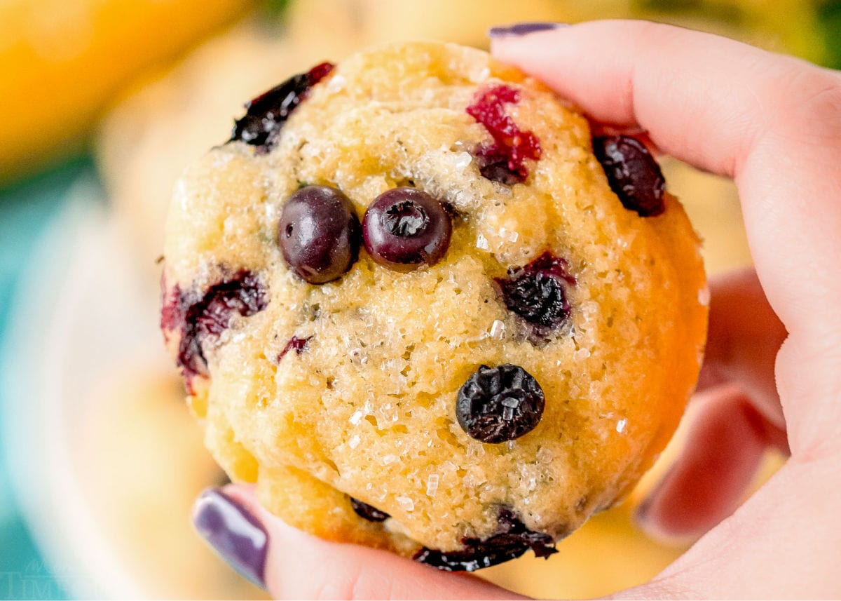 holding blueberry corn muffin in hand