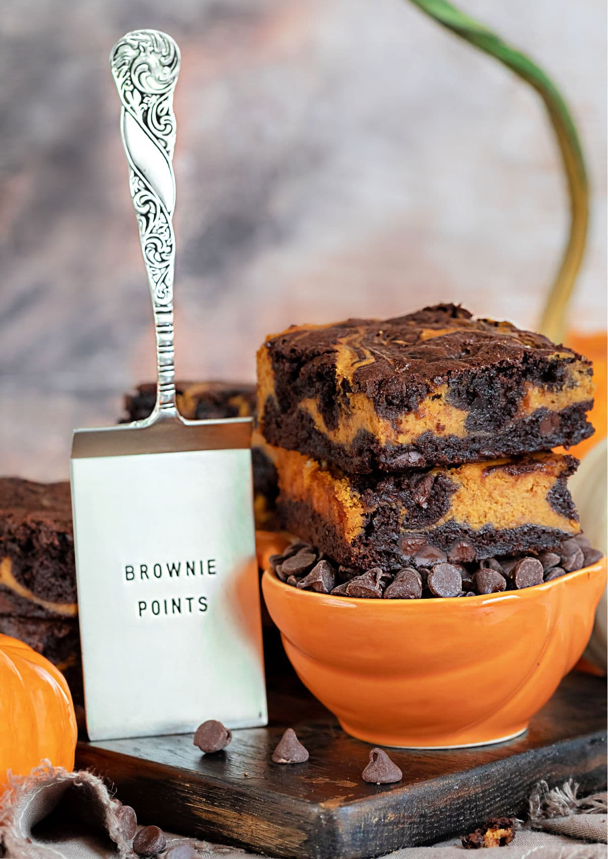 pumpkin cheesecake brownies siedzące na pomarańczowej misce wypełnionej wiórkami czekoladowymi z serwerem brownie po lewej stronie