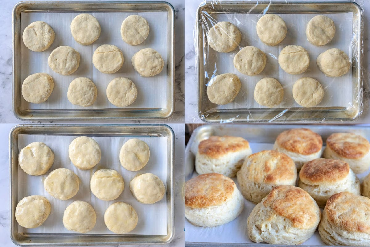 4 image collage of biscuits cut out on sheet pan rising and then baked.