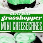 grasshopper mini cheesecakes with bite taken out of one and three on a plate with center color block and text overlay.