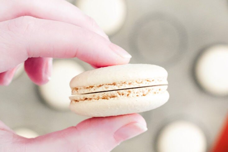 two macaron shells of the same size being held up.