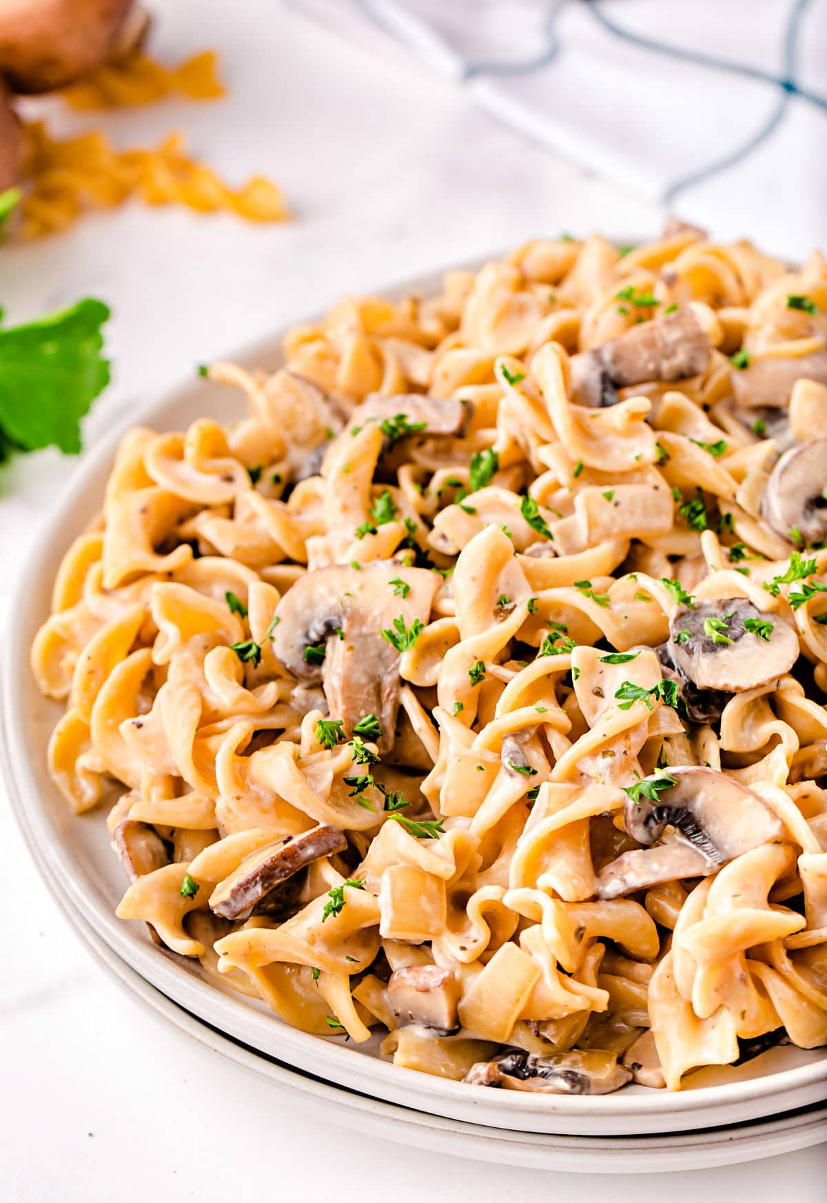 close up look at stroganoff with mushrooms on white plate with white and black towel in background.