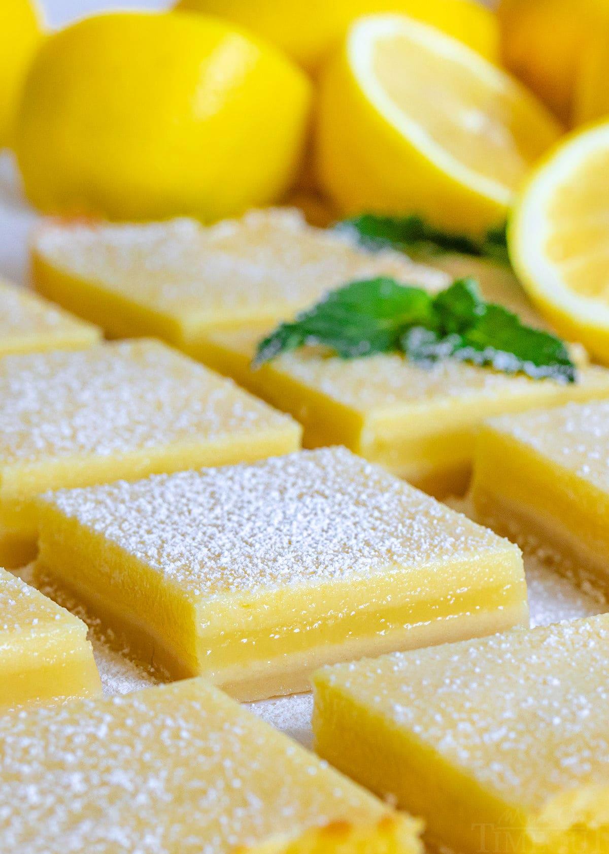 lemon bars cut on parchment paper.