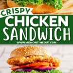 two image collage with one crispy chicken sandwich on top and two stacked sandwiches in the bottom image. sandwiches have lettuce, tomato, and onion. Center color block with text overlay.